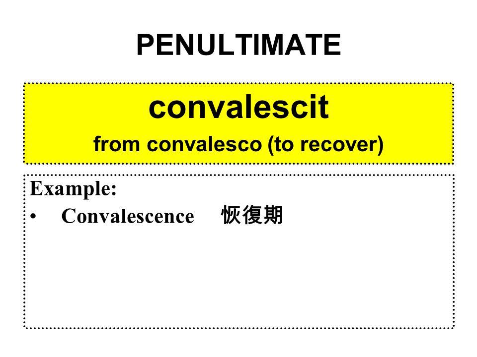 PENULTIMATE convalescit from convalesco (to recover) Example: Convalescence 恢復期