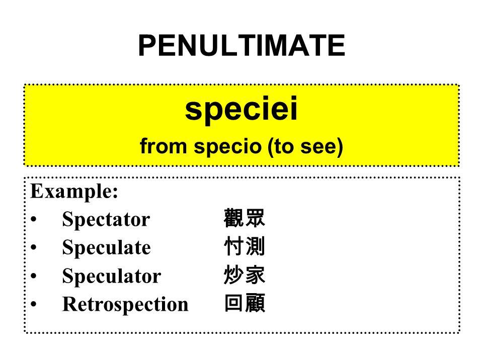 ANTEPENULTIMATE regimus from rego (to govern) Example: Regent 攝政 Regal 帝王的 Regiment 團 (軍隊單位)