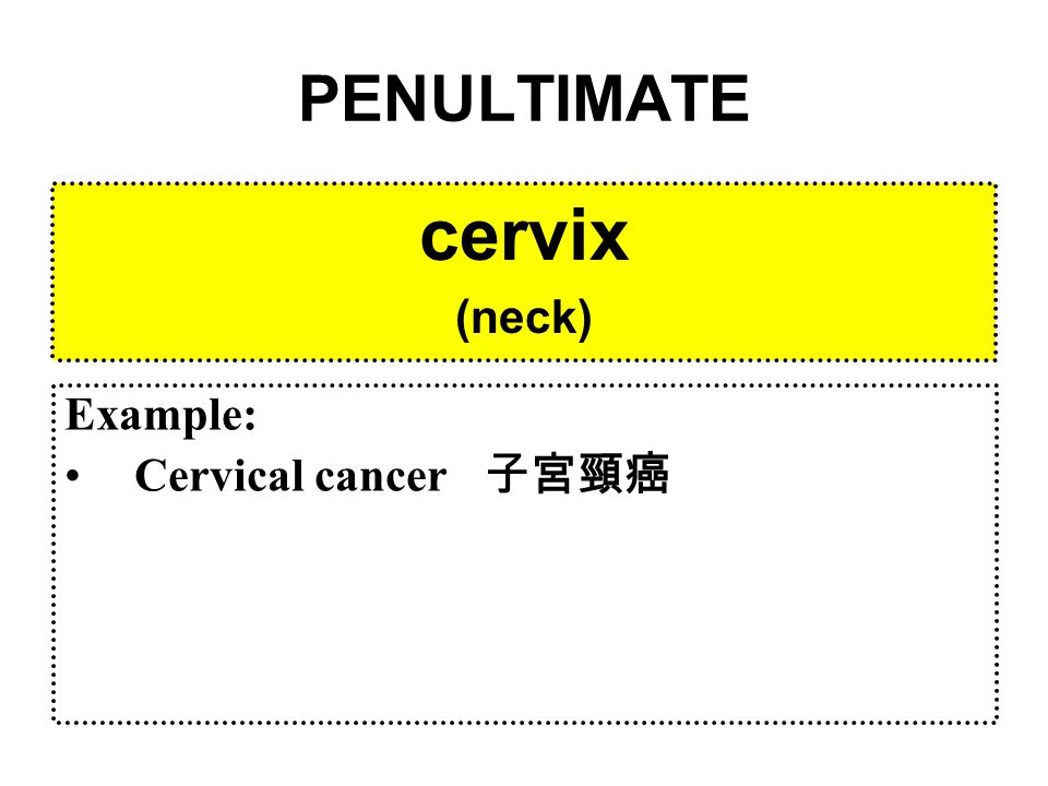PENULTIMATE cervix (neck) Example: Cervical cancer 子宮頸癌
