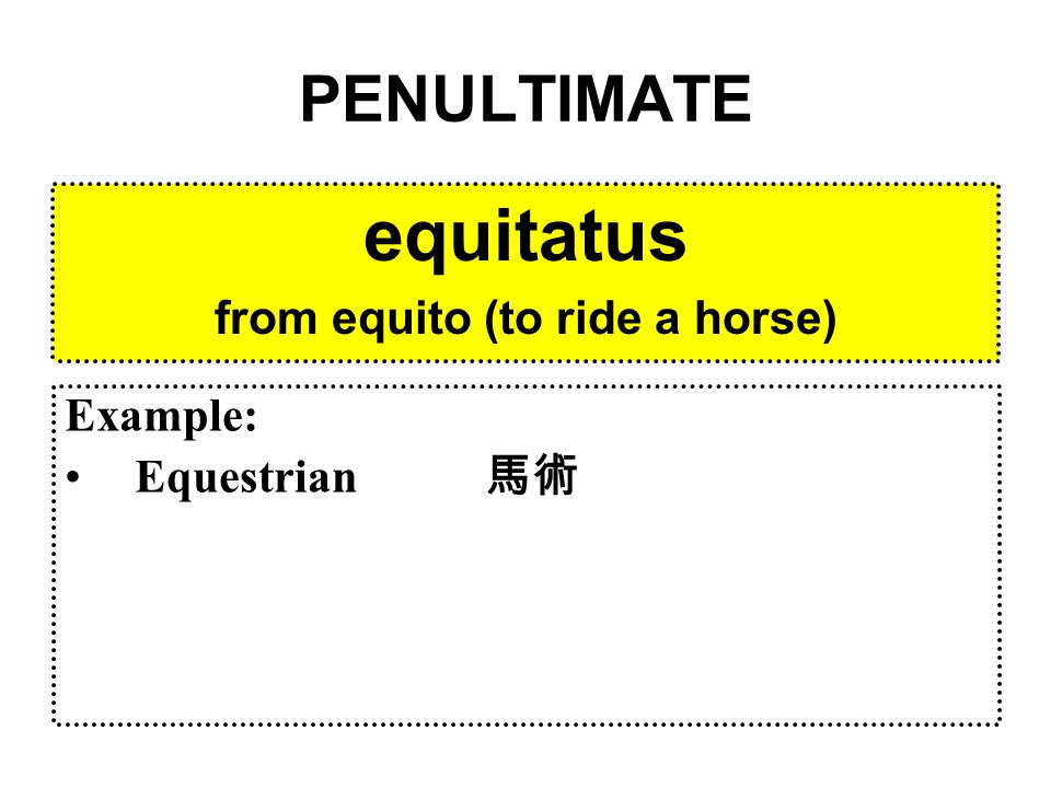 PENULTIMATE equitatus from equito (to ride a horse) Example: Equestrian 馬術