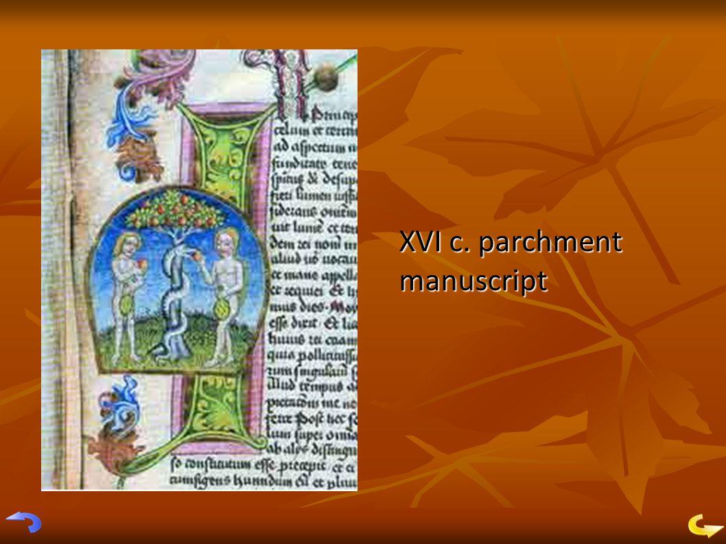 XVI c. parchment manuscript