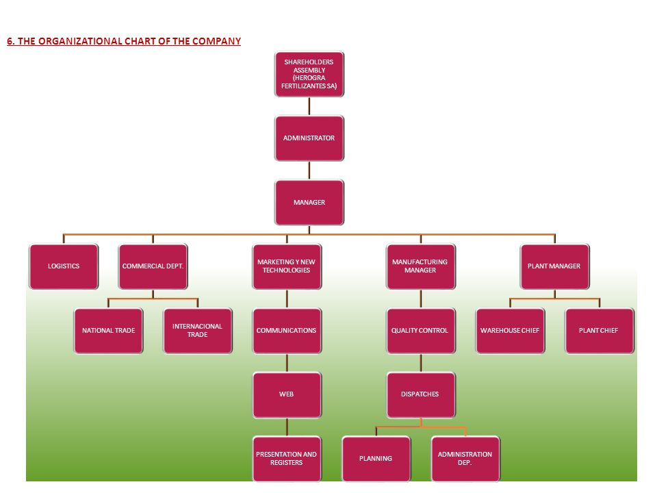 6. THE ORGANIZATIONAL CHART OF THE COMPANY The next graph shows the most outstanding elements in the company organization