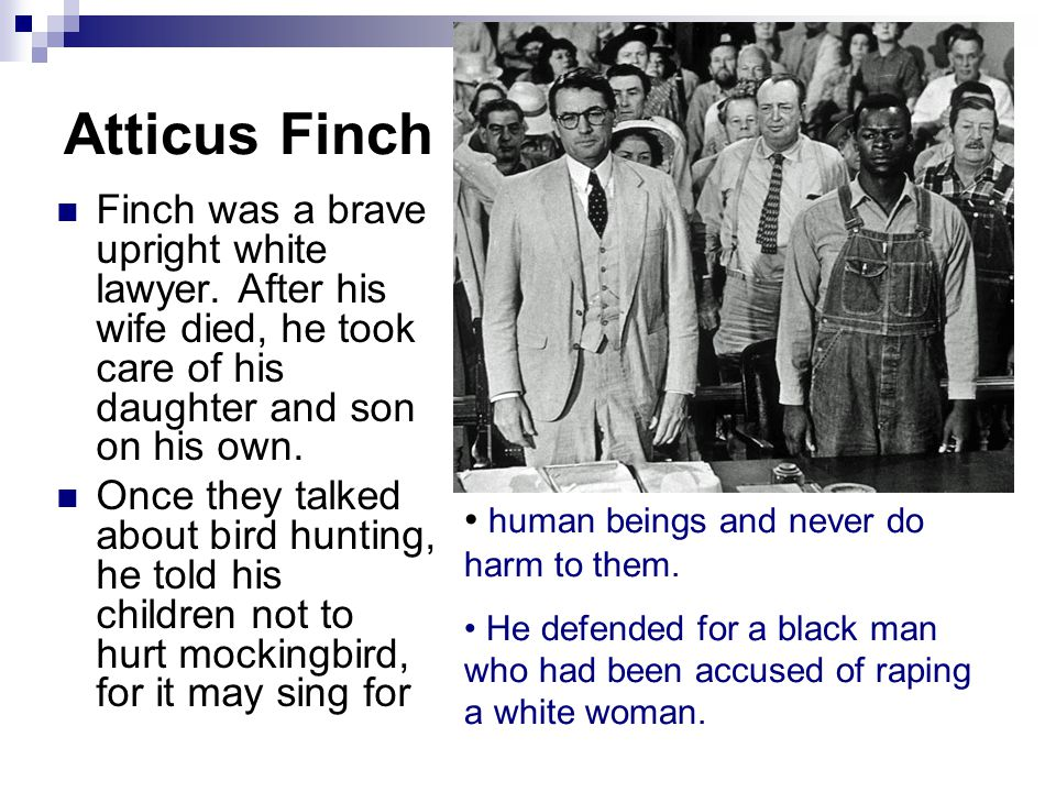 Atticus Finch Finch was a brave upright white lawyer. After his wife died, he took care of his daughter and son on his own. Once they talked about bir