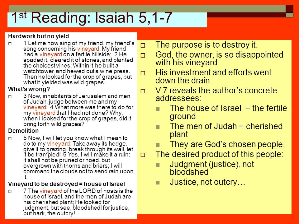 1 st Reading: Isaiah 5,1-7 Hardwork but no yield  1 Let me now sing of my friend, my friend's song concerning his vineyard. My friend had a vineyard