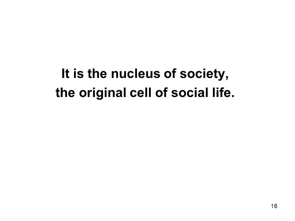16 It is the nucleus of society, the original cell of social life.