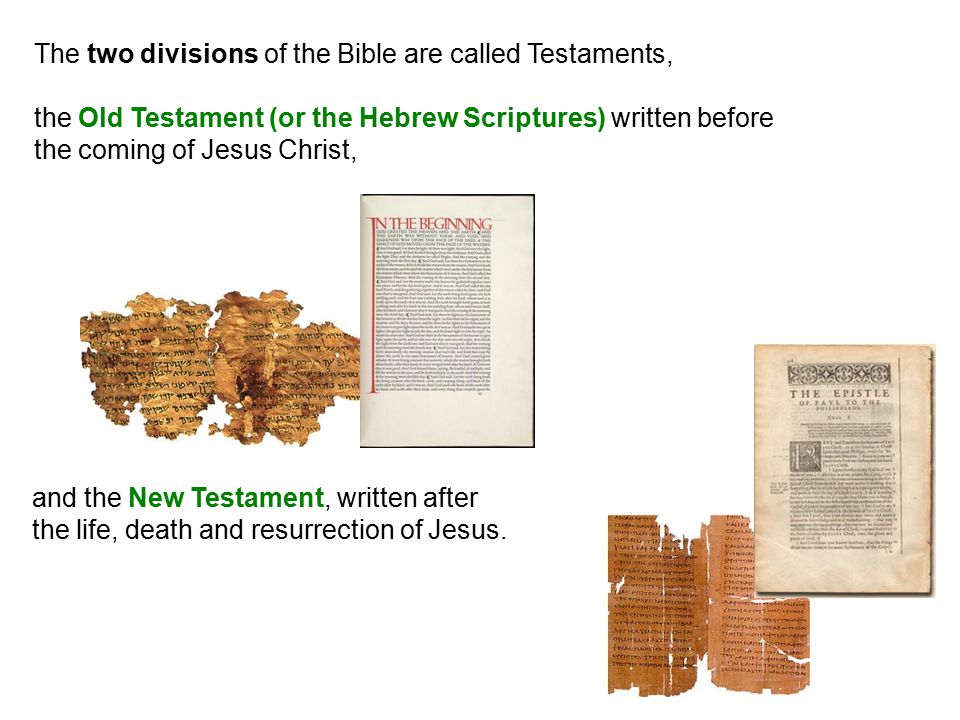 The two divisions of the Bible are called Testaments, the Old Testament (or the Hebrew Scriptures) written before the coming of Jesus Christ, and the New Testament, written after the life, death and resurrection of Jesus.
