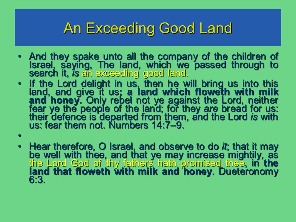 An Exceeding Good Land And they spake unto all the company of the children of Israel, saying, The land, which we passed through to search it, is an exceeding good land.