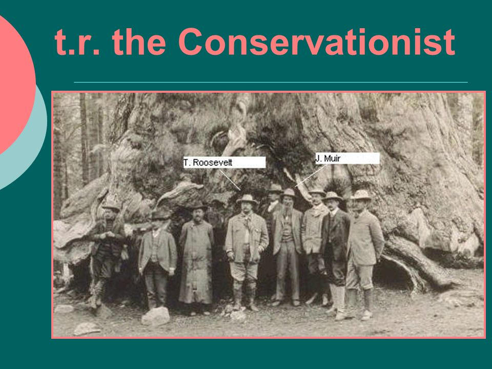 t.r. the Conservationist