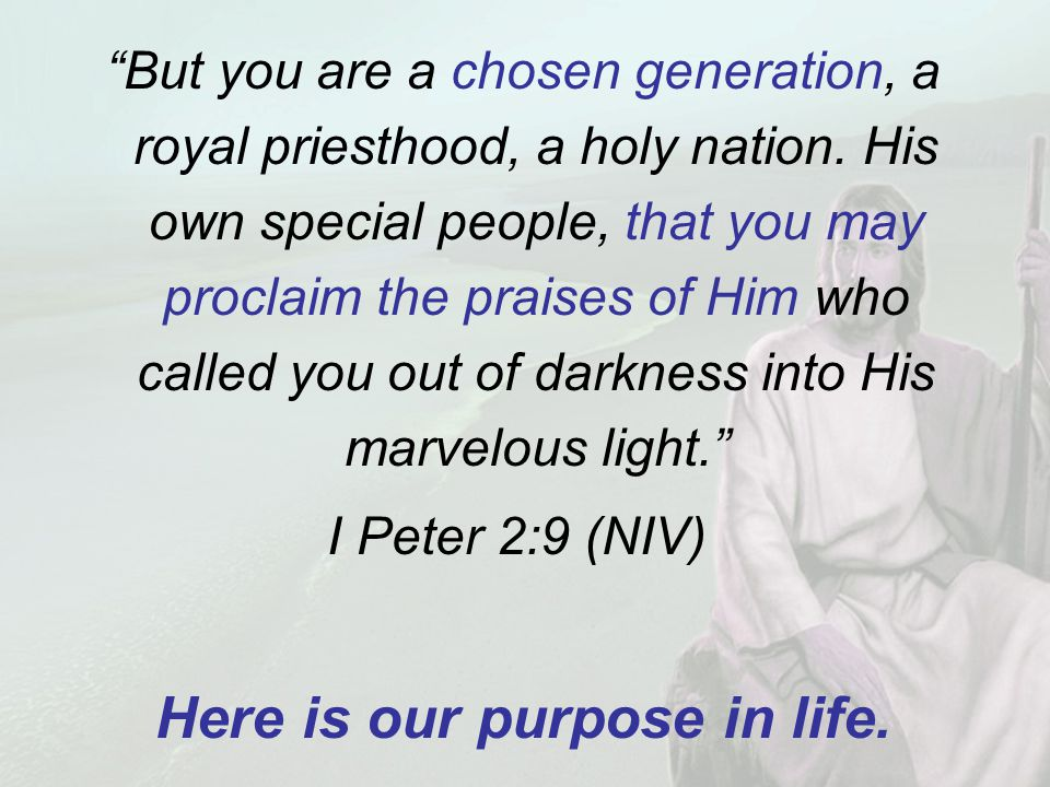 But you are a chosen generation, a royal priesthood, a holy nation.