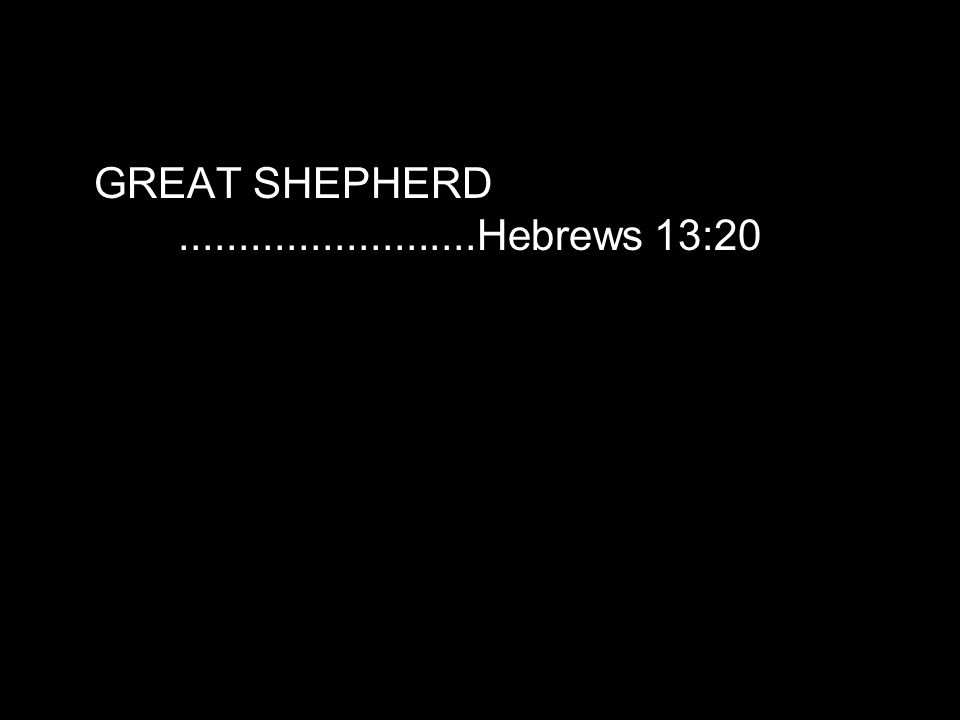 GREAT SHEPHERD.........................Hebrews 13:20