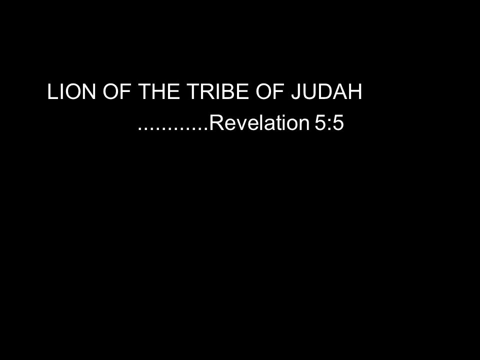 LION OF THE TRIBE OF JUDAH............Revelation 5:5