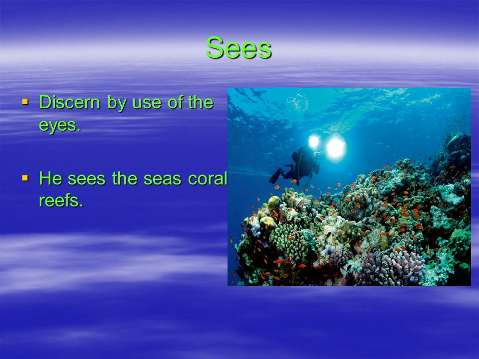 Sees DDDDiscern by use of the eyes. HHHHe sees the seas coral reefs.