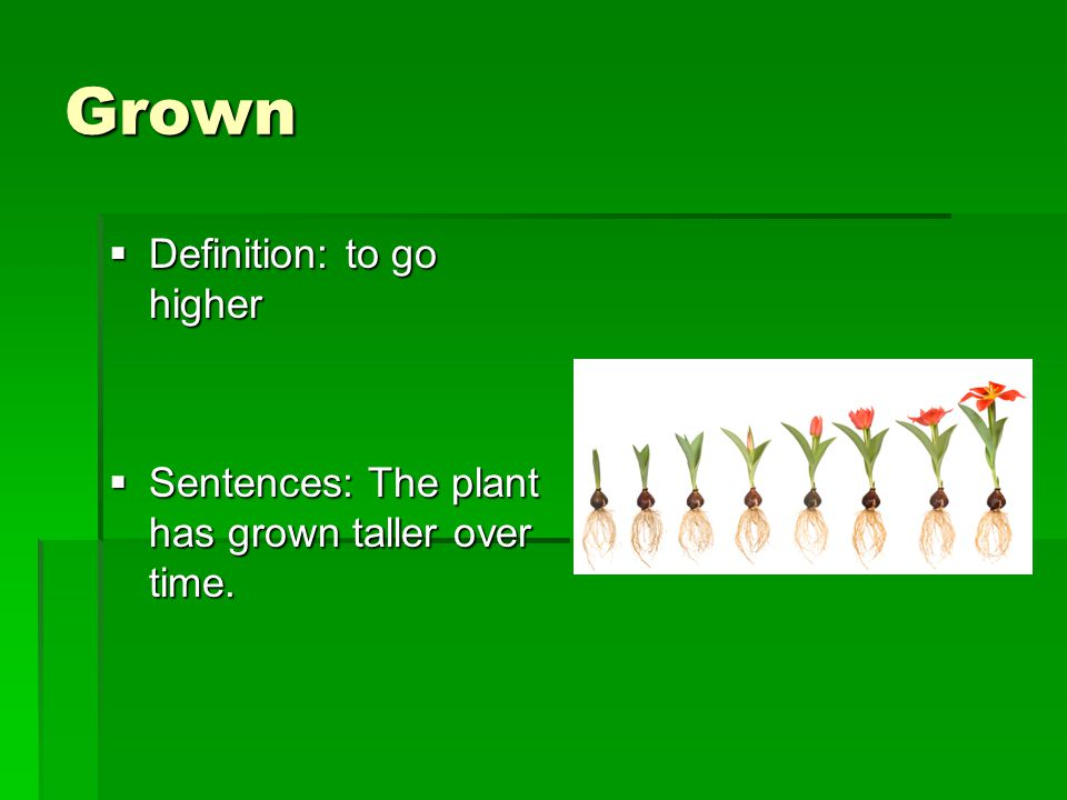 Grown  Definition: to go higher  Sentences: The plant has grown taller over time.