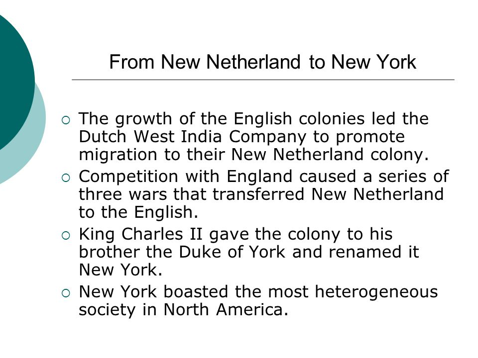 From New Netherland to New York  The growth of the English colonies led the Dutch West India Company to promote migration to their New Netherland col