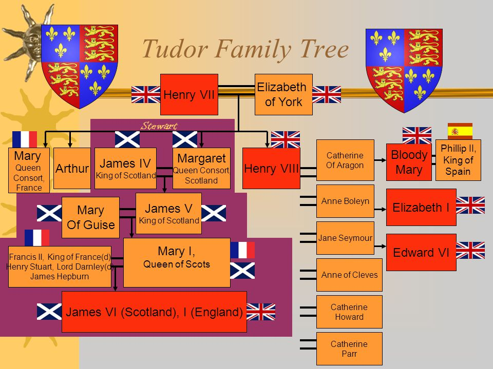 The House of Tudor  (C) Henry VII  (P) Henry VIII  (P) Edward VI (ruled ages 9 – 16)  (C) Mary (Bloody Mary, daughter of Aragon; married King of Spain, burned 300 Protestants at the stake; died of fever)  (P) Elizabeth I * (C) = Catholic; (P) = Protestant