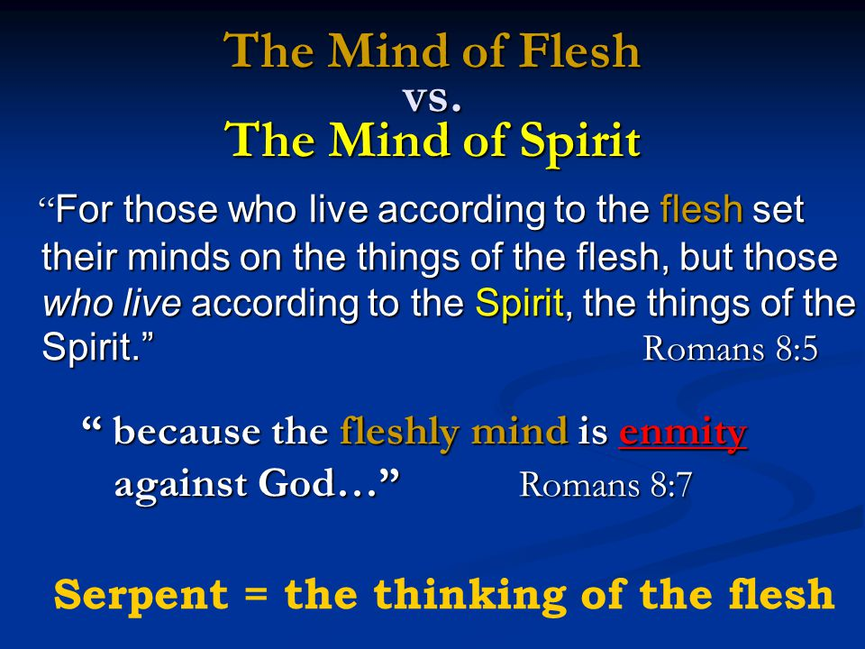 """The Mind of Flesh vs. The Mind of Spirit """" For those who live according to the flesh set their minds on the things of the flesh, but those who live ac"""