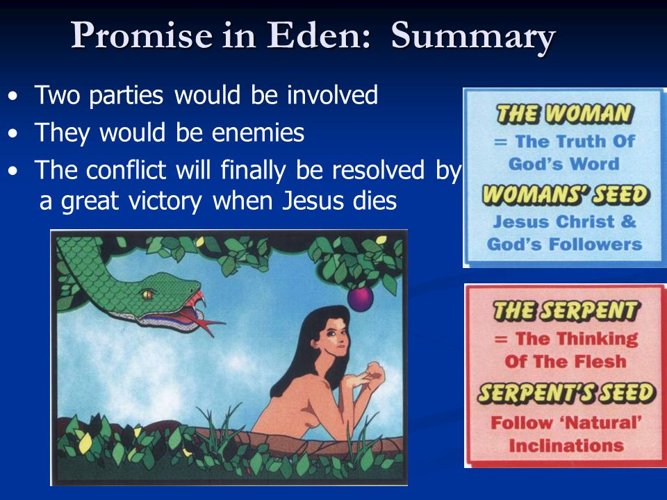 Two parties would be involved They would be enemies The conflict will finally be resolved by a great victory when Jesus dies Promise in Eden: Summary
