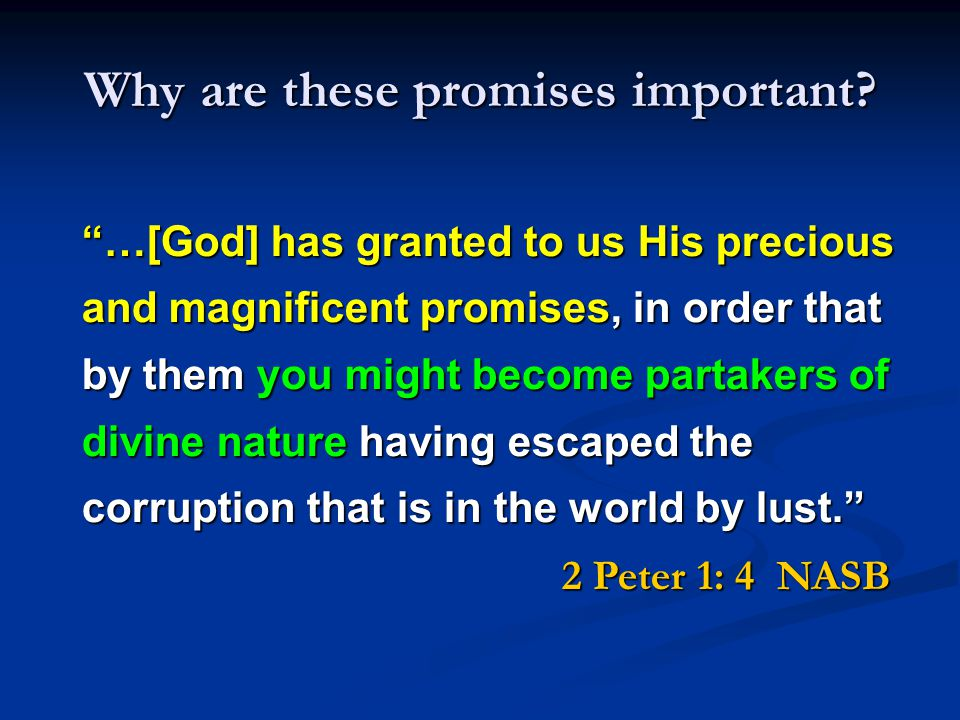 Summary of the Promises No FUTURE David s Descendent or Seed A Throne & Kingdom FOREVER 3.
