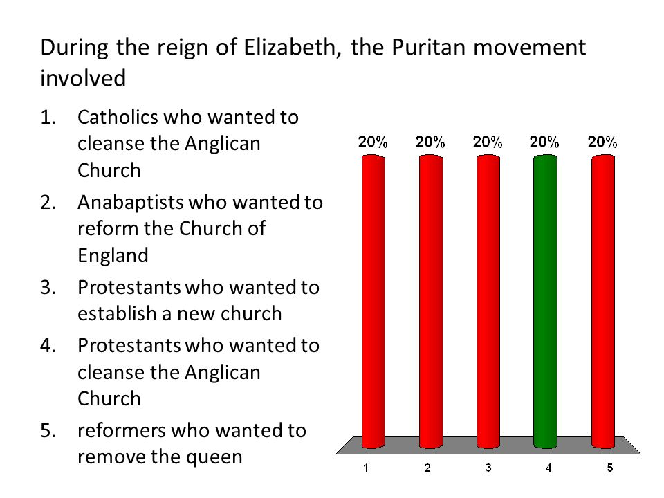 During the reign of Elizabeth, the Puritan movement involved 1.Catholics who wanted to cleanse the Anglican Church 2.Anabaptists who wanted to reform the Church of England 3.Protestants who wanted to establish a new church 4.Protestants who wanted to cleanse the Anglican Church 5.reformers who wanted to remove the queen