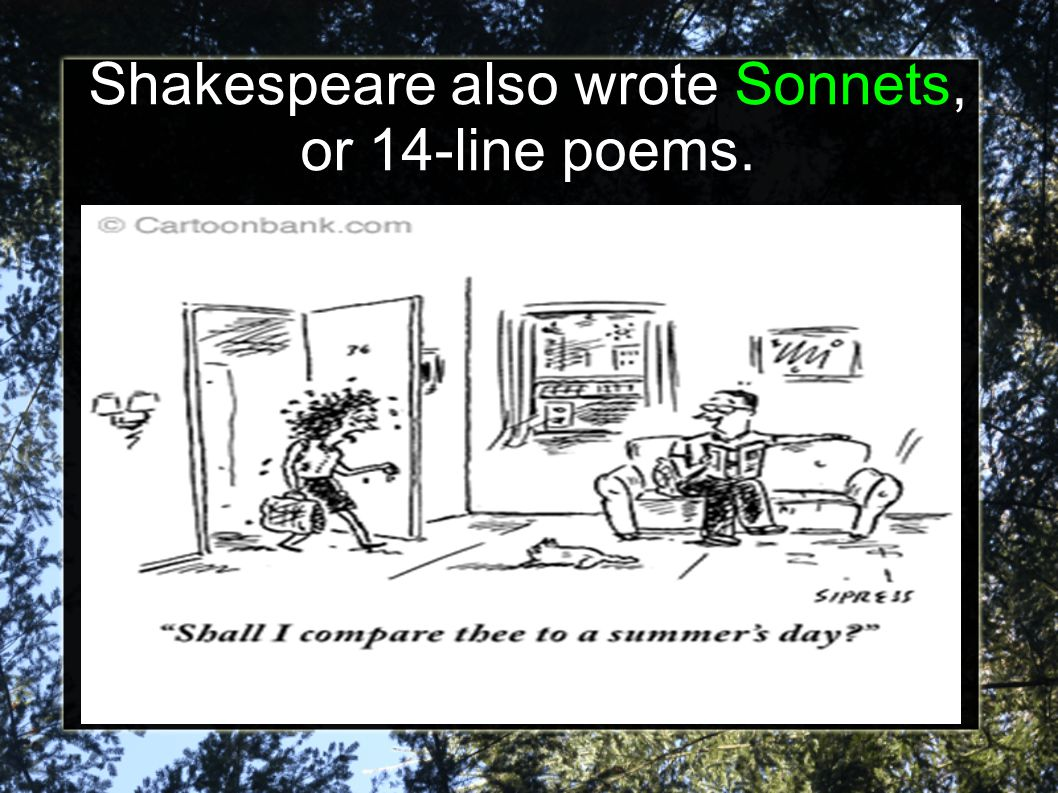 Shakespeare also wrote Sonnets, or 14-line poems.
