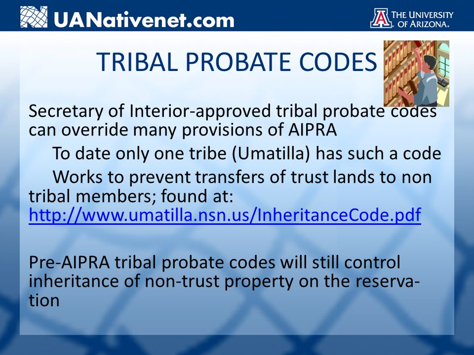 TRIBAL PROBATE CODES Secretary of Interior-approved tribal probate codes can override many provisions of AIPRA To date only one tribe (Umatilla) has such a code Works to prevent transfers of trust lands to non tribal members; found at: http://www.umatilla.nsn.us/InheritanceCode.pdf http://www.umatilla.nsn.us/InheritanceCode.pdf Pre-AIPRA tribal probate codes will still control inheritance of non-trust property on the reserva- tion