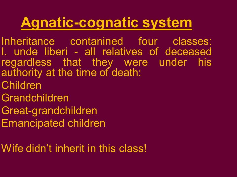 Agnatic-cognatic system Inheritance contanined four classes: I.