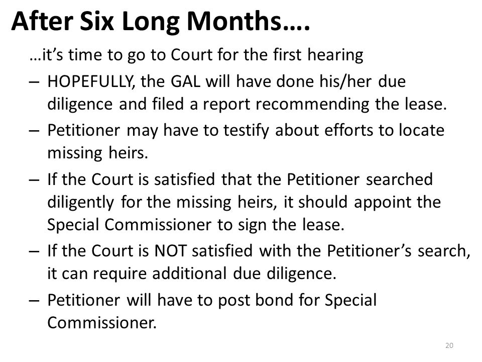After Six Long Months…. …it's time to go to Court for the first hearing – HOPEFULLY, the GAL will have done his/her due diligence and filed a report r