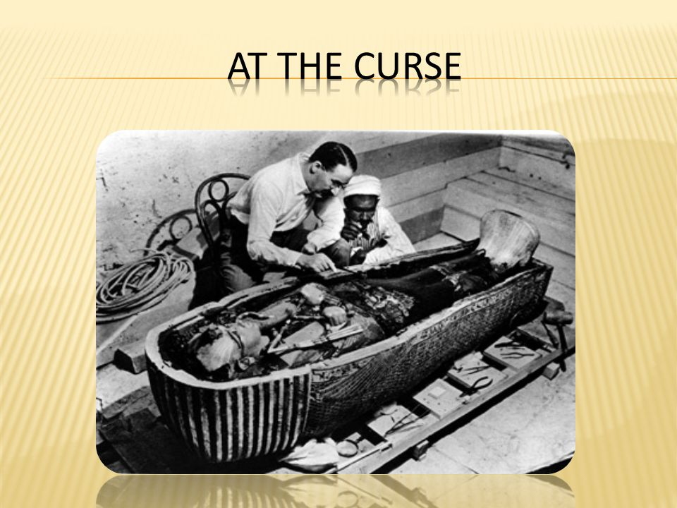  Discovering Tut: the Saga Continues describes the boy King Tut who was the last heir of a very powerful family that ruled Egypt for centuries.