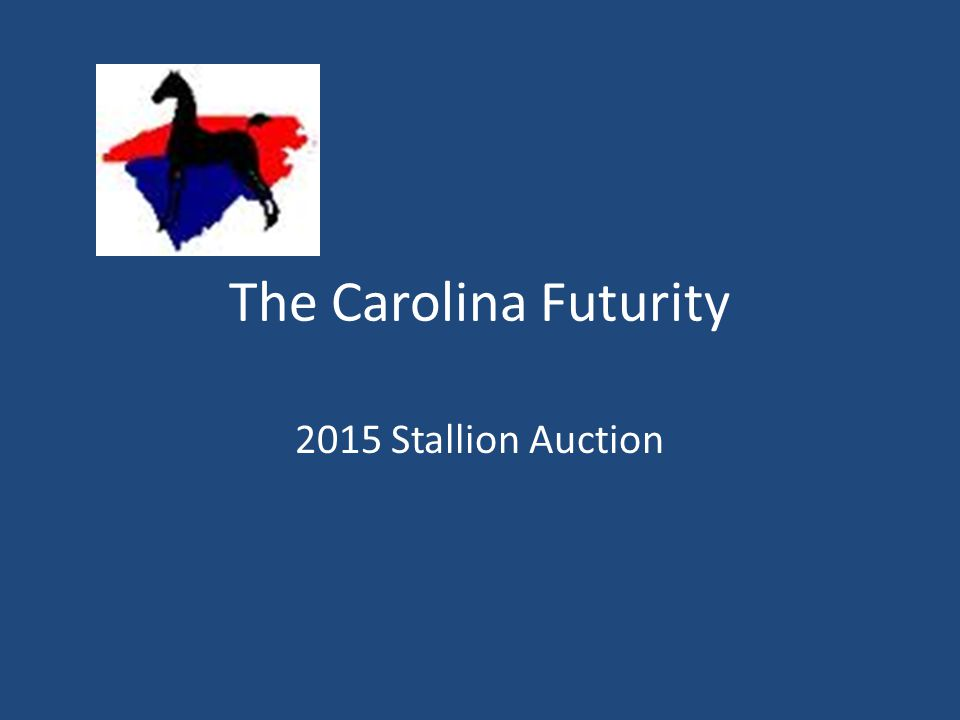 The Carolina Futurity 2015 Stallion Auction