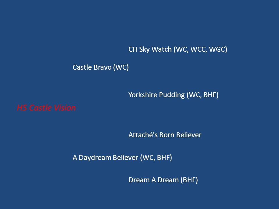 CH Sky Watch (WC, WCC, WGC) Castle Bravo (WC) Yorkshire Pudding (WC, BHF) HS Castle Vision Attaché s Born Believer A Daydream Believer (WC, BHF) Dream A Dream (BHF)