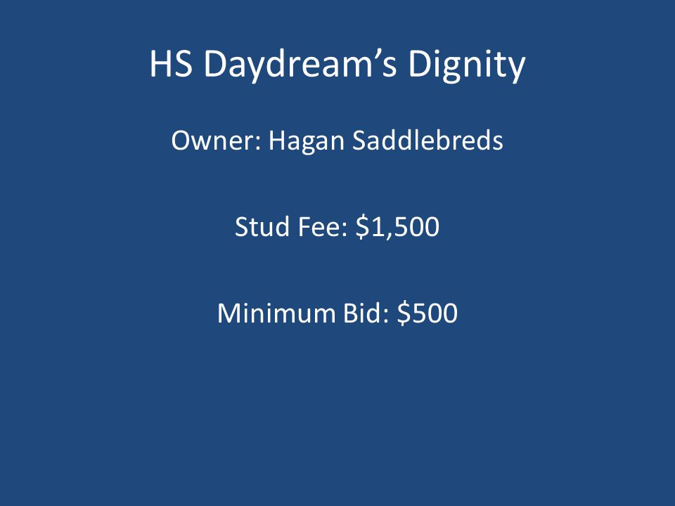 HS Daydream's Dignity Owner: Hagan Saddlebreds Stud Fee: $1,500 Minimum Bid: $500