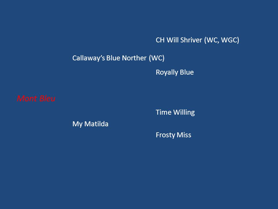 CH Will Shriver (WC, WGC) Callaway's Blue Norther (WC) Royally Blue Mont Bleu Time Willing My Matilda Frosty Miss