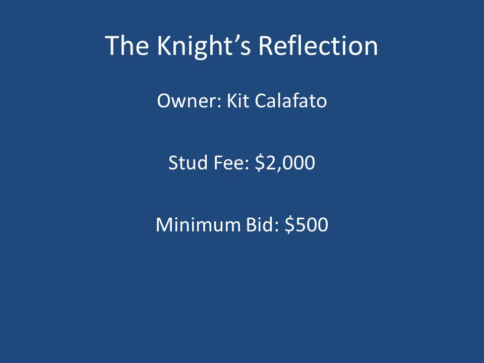The Knight's Reflection Owner: Kit Calafato Stud Fee: $2,000 Minimum Bid: $500