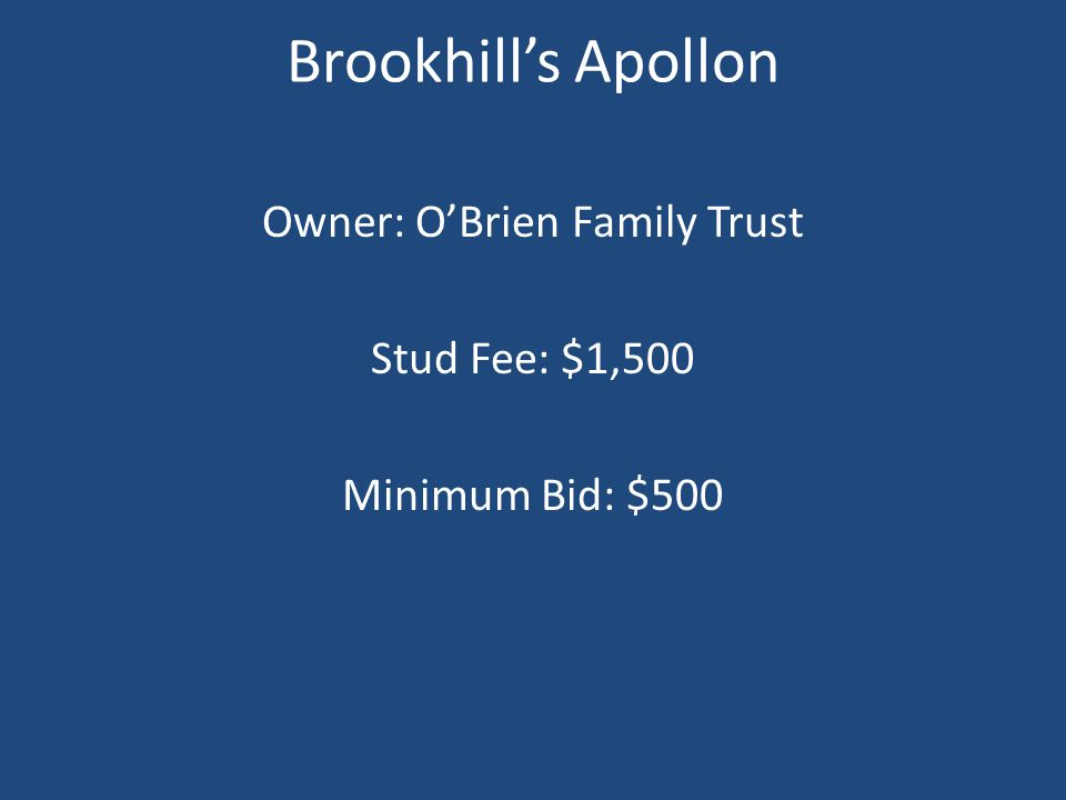 Brookhill's Apollon Owner: O'Brien Family Trust Stud Fee: $1,500 Minimum Bid: $500