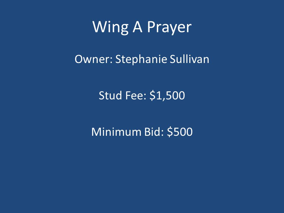 Wing A Prayer Owner: Stephanie Sullivan Stud Fee: $1,500 Minimum Bid: $500