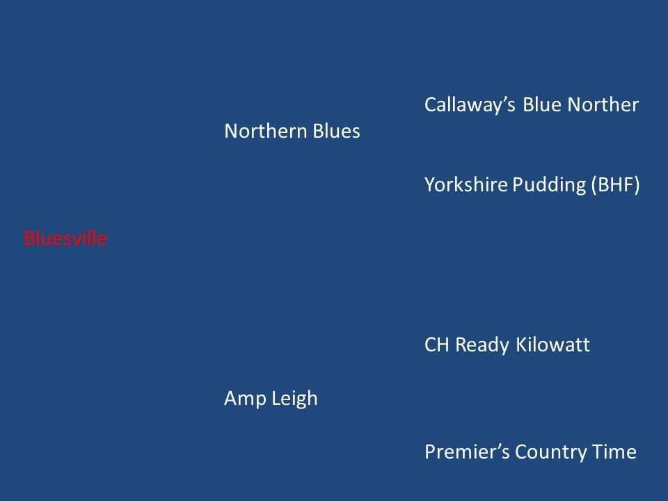 Callaway's Blue Norther Northern Blues Yorkshire Pudding (BHF) Bluesville CH Ready Kilowatt Amp Leigh Premier's Country Time