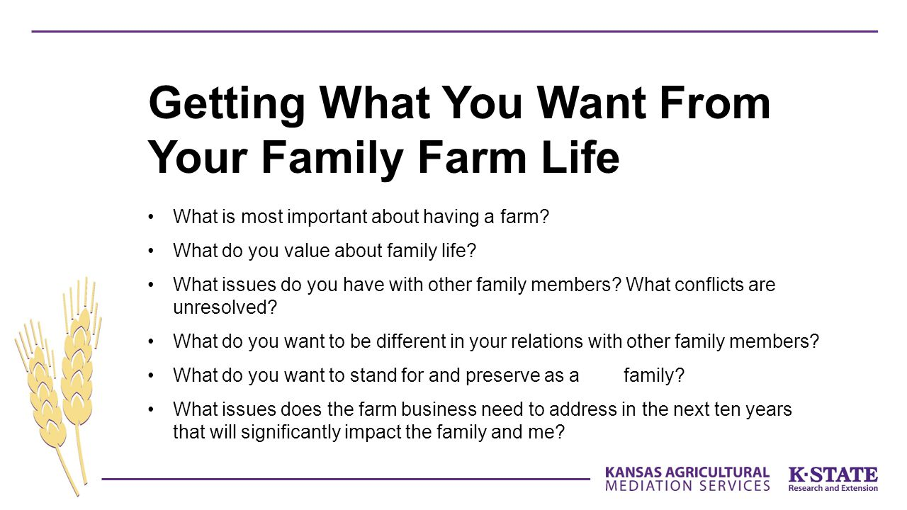 What is most important about having a farm? What do you value about family life? What issues do you have with other family members? What conflicts are