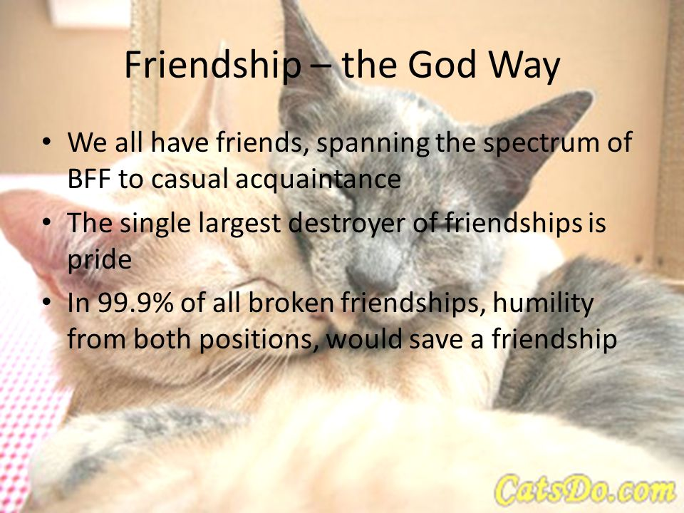Friendship – the God Way We all have friends, spanning the spectrum of BFF to casual acquaintance The single largest destroyer of friendships is pride In 99.9% of all broken friendships, humility from both positions, would save a friendship