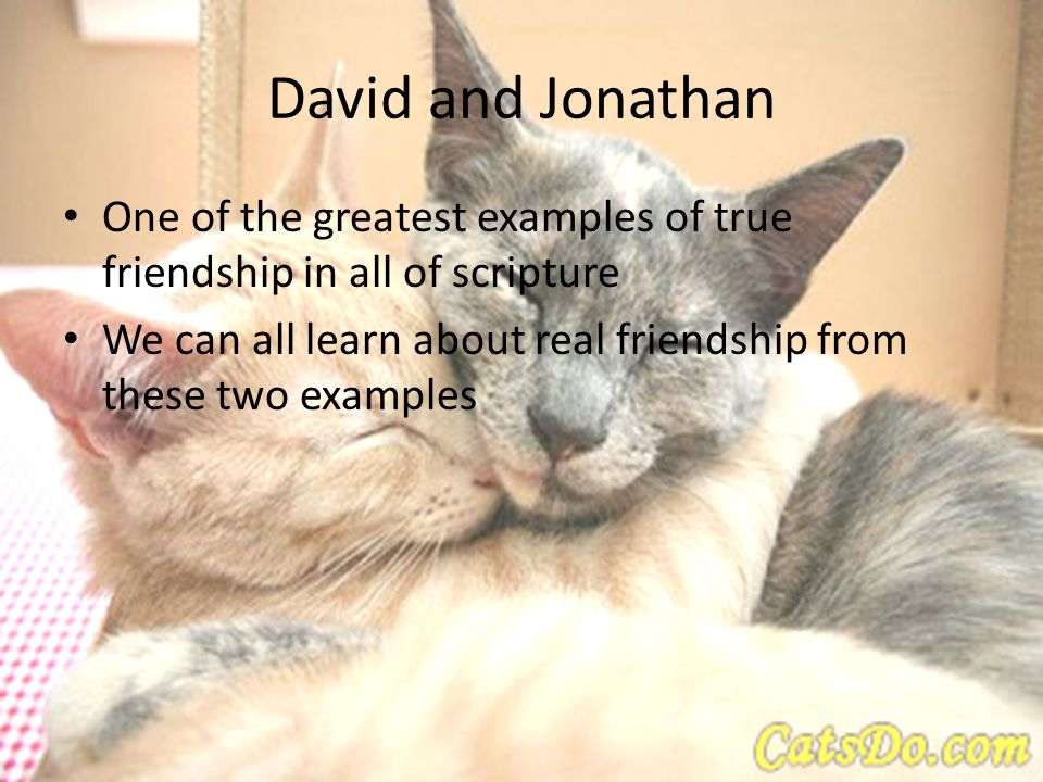 David and Jonathan One of the greatest examples of true friendship in all of scripture We can all learn about real friendship from these two examples