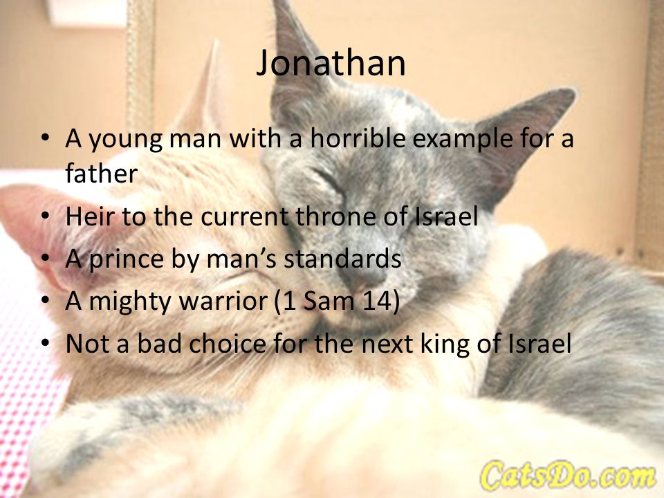 Jonathan A young man with a horrible example for a father Heir to the current throne of Israel A prince by man's standards A mighty warrior (1 Sam 14) Not a bad choice for the next king of Israel