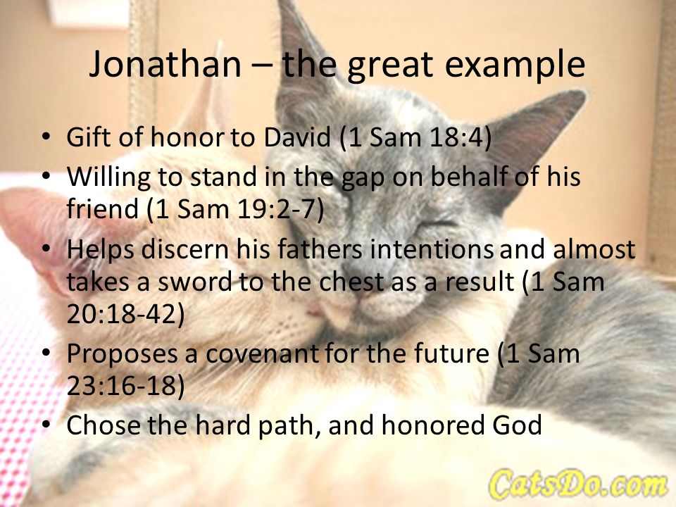 Jonathan – the great example Gift of honor to David (1 Sam 18:4) Willing to stand in the gap on behalf of his friend (1 Sam 19:2-7) Helps discern his fathers intentions and almost takes a sword to the chest as a result (1 Sam 20:18-42) Proposes a covenant for the future (1 Sam 23:16-18) Chose the hard path, and honored God