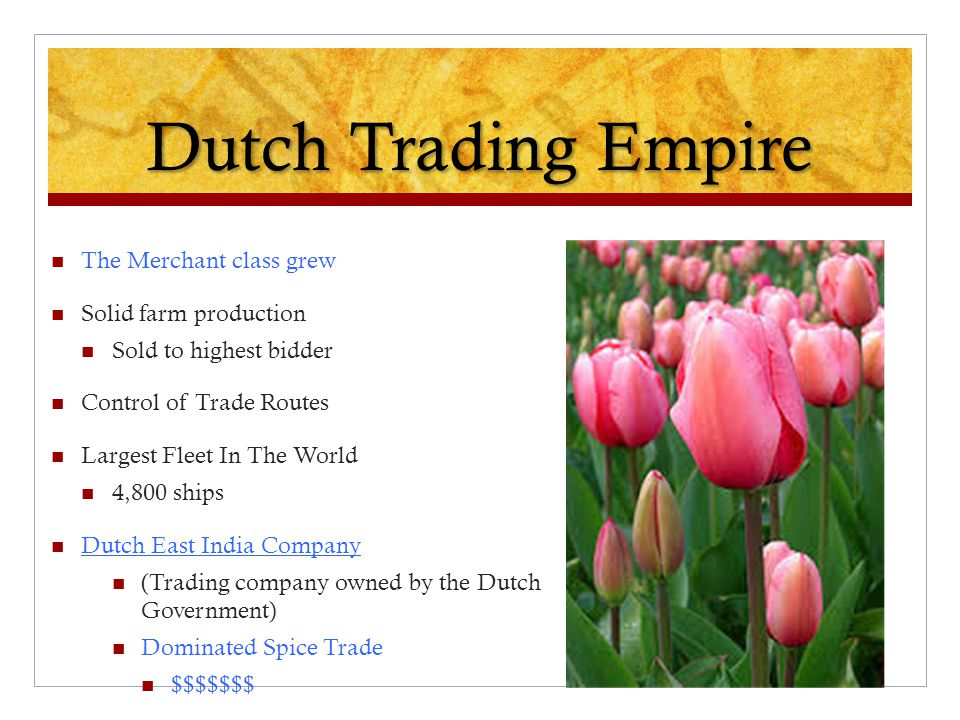 Dutch Trading Empire The Merchant class grew Solid farm production Sold to highest bidder Control of Trade Routes Largest Fleet In The World 4,800 shi