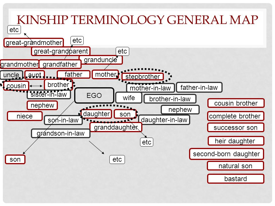 KINSHIP TERMINOLOGY GENERAL MAP EGO father grandmother great-grandmother great-grandparent brother sister-in-law nephew uncle aunt mother-in-law wife father-in-law son daughter-in-law daughter son-in-law granddaughter granduncle grandson-in-law etc cousin niece mother grandfather etc brother-in-law nephew stepbrother etc cousin brother natural son bastard complete brother heir daughter successor son second-born daughter son