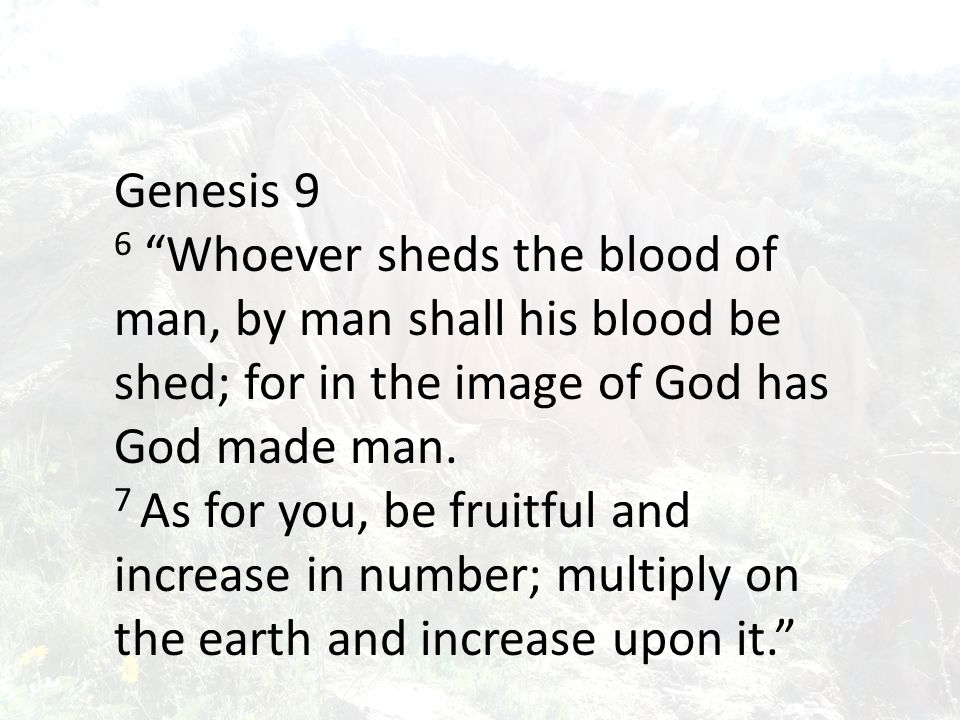 Genesis 9 6 Whoever sheds the blood of man, by man shall his blood be shed; for in the image of God has God made man.