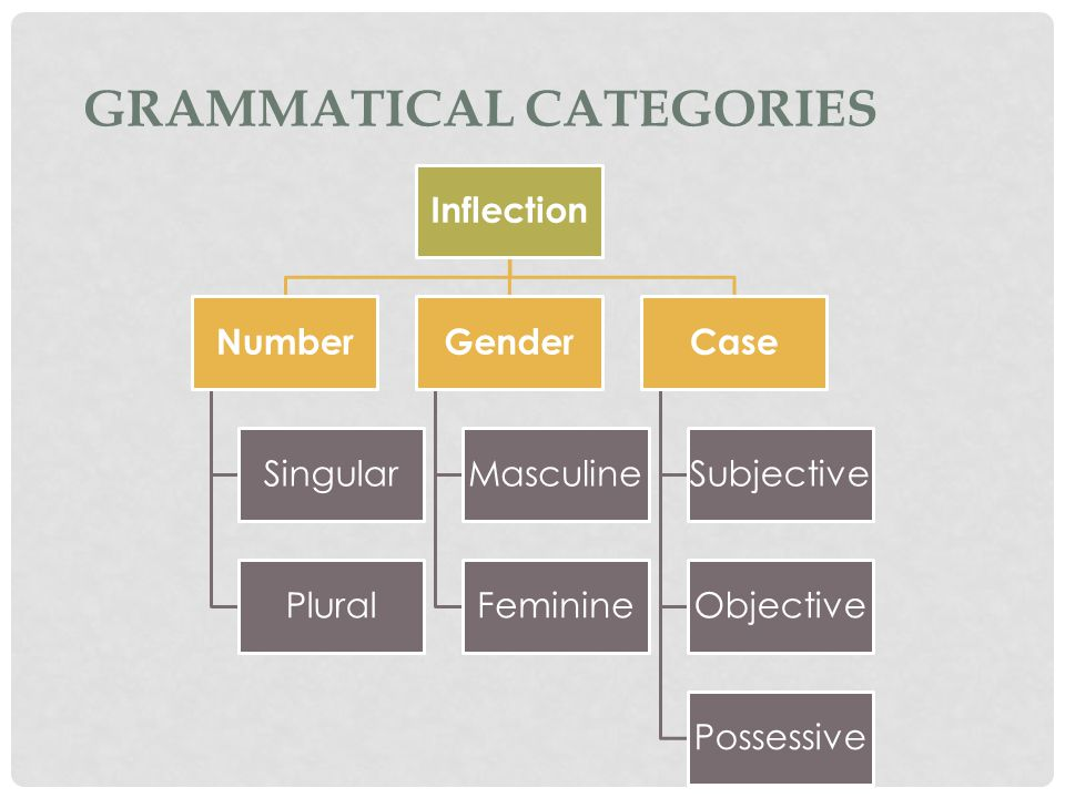 Inflection Number Singular Plural Gender Masculine Feminine Case Subjective Objective Possessive
