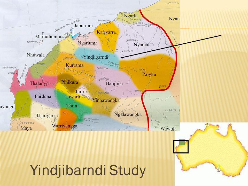 Yindjibarndi Study