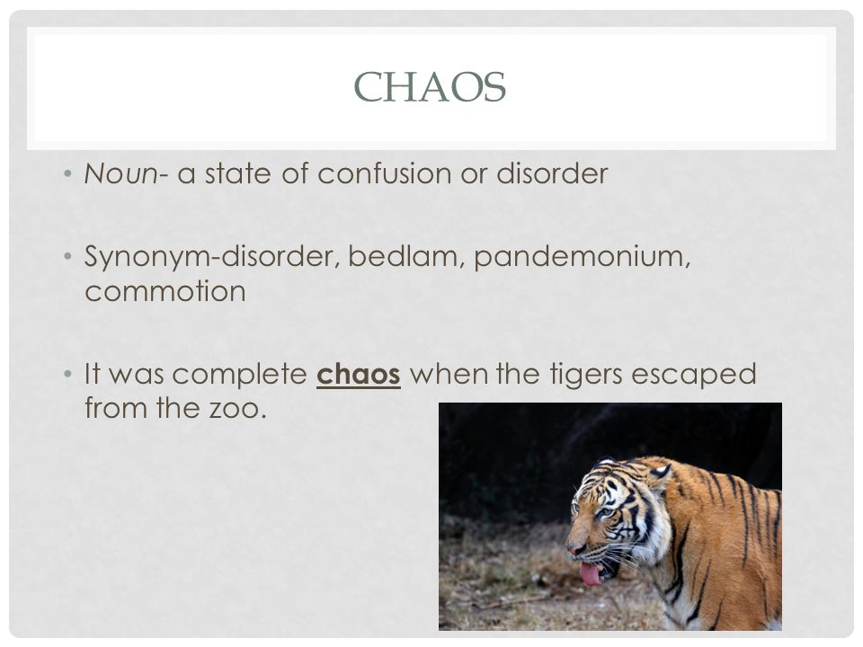 CHAOS Noun- a state of confusion or disorder Synonym-disorder, bedlam, pandemonium, commotion It was complete chaos when the tigers escaped from the zoo.