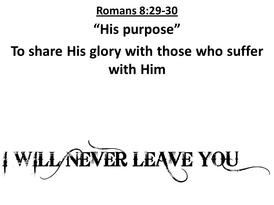 Romans 8:32 If God would give His only beloved Son, He will certainly graciously give us creation to share with Him.