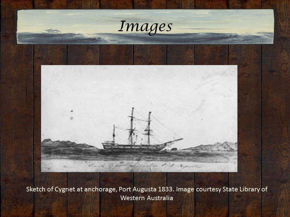 Images Sketch of Cygnet at anchorage, Port Augusta 1833.
