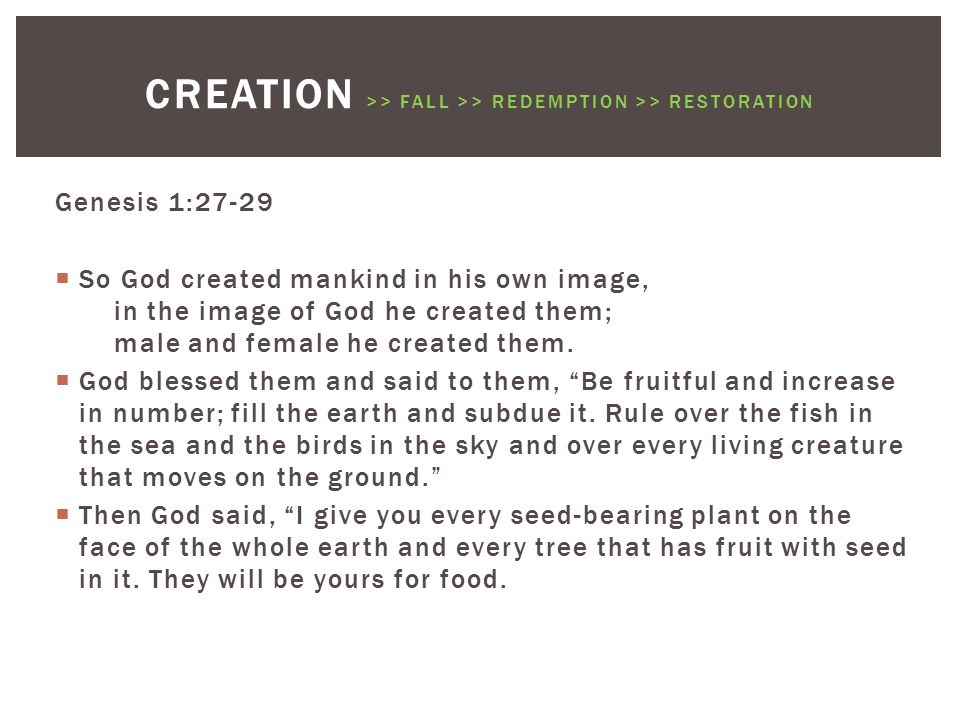 Genesis 1:27-29  So God created mankind in his own image, in the image of God he created them; male and female he created them.